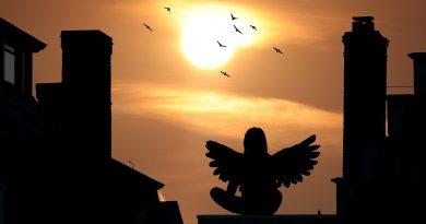 """""""Die wilden Wahnsinnsengel: Engel lieben einfach anders"""" von Thomas Brezina"""